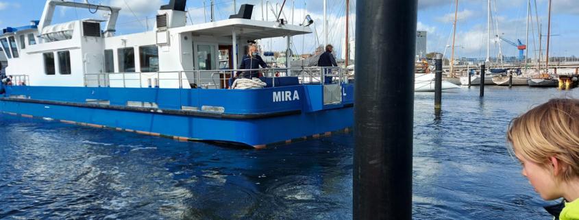 Seebestattung Mira Rathje Werft